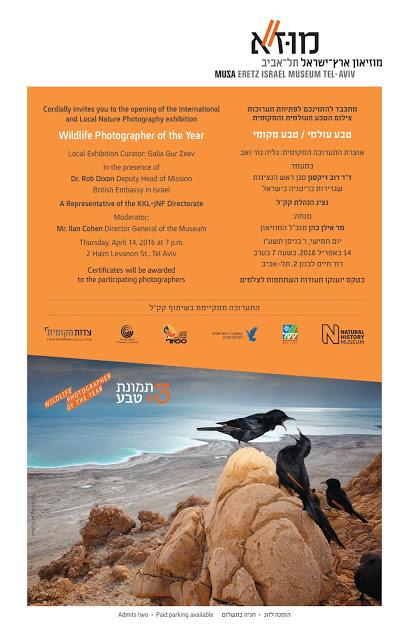 תערוכה  קבוצתית  מוזיאון ארץ ישראל אפריל -אוגוסט 2016