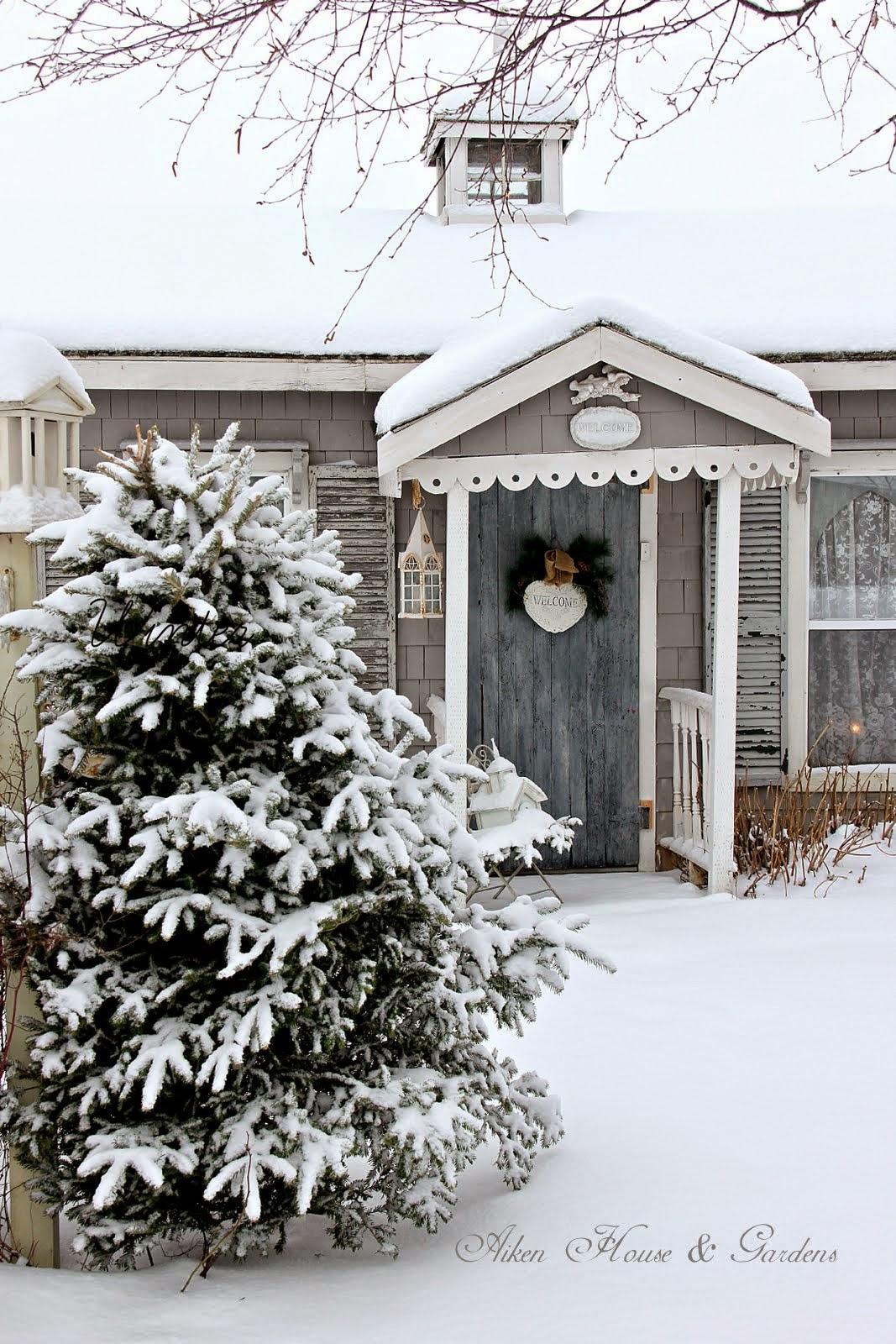 aiken house u0026 gardens our winter garden