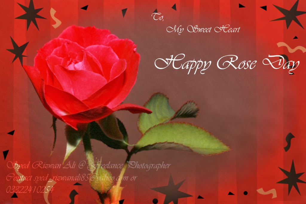 My Valentine 2014 Valentines Day Live Wallpapers Happy Rose Day