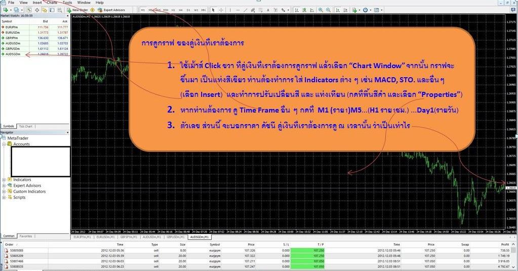 Thai forex