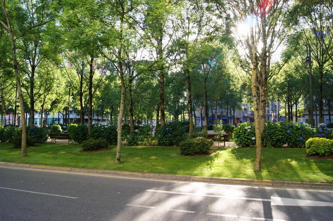Pontevedra en fotos jardin en la plaza de galicia for Jardines galicia