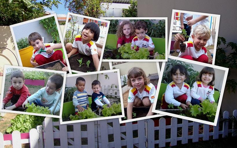Amado Escola de Educação Infantil Dom Quixote: PROJETO HORTA E JARDIM RP65