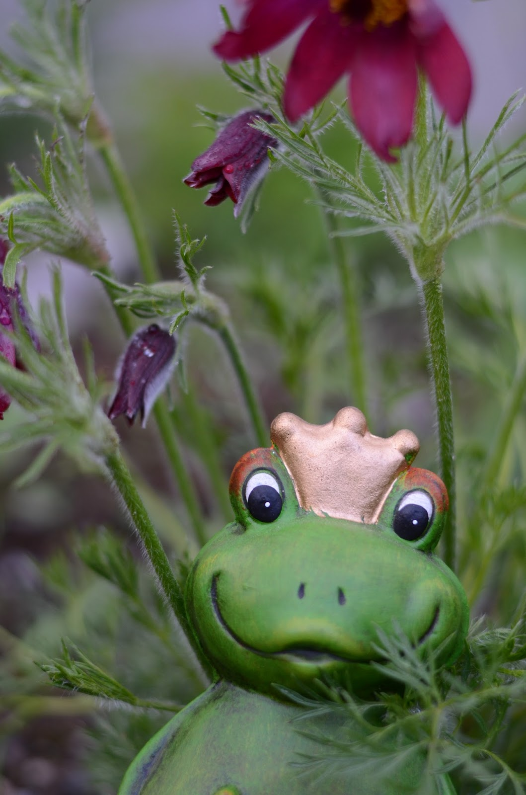 liten blå frosk