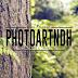 19 kostenlose Wald Bilder (Public Domain) #1