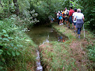Canal i bassa del Fornot de Puigdomènec
