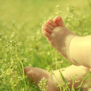 piececitos de bebe en la hierba