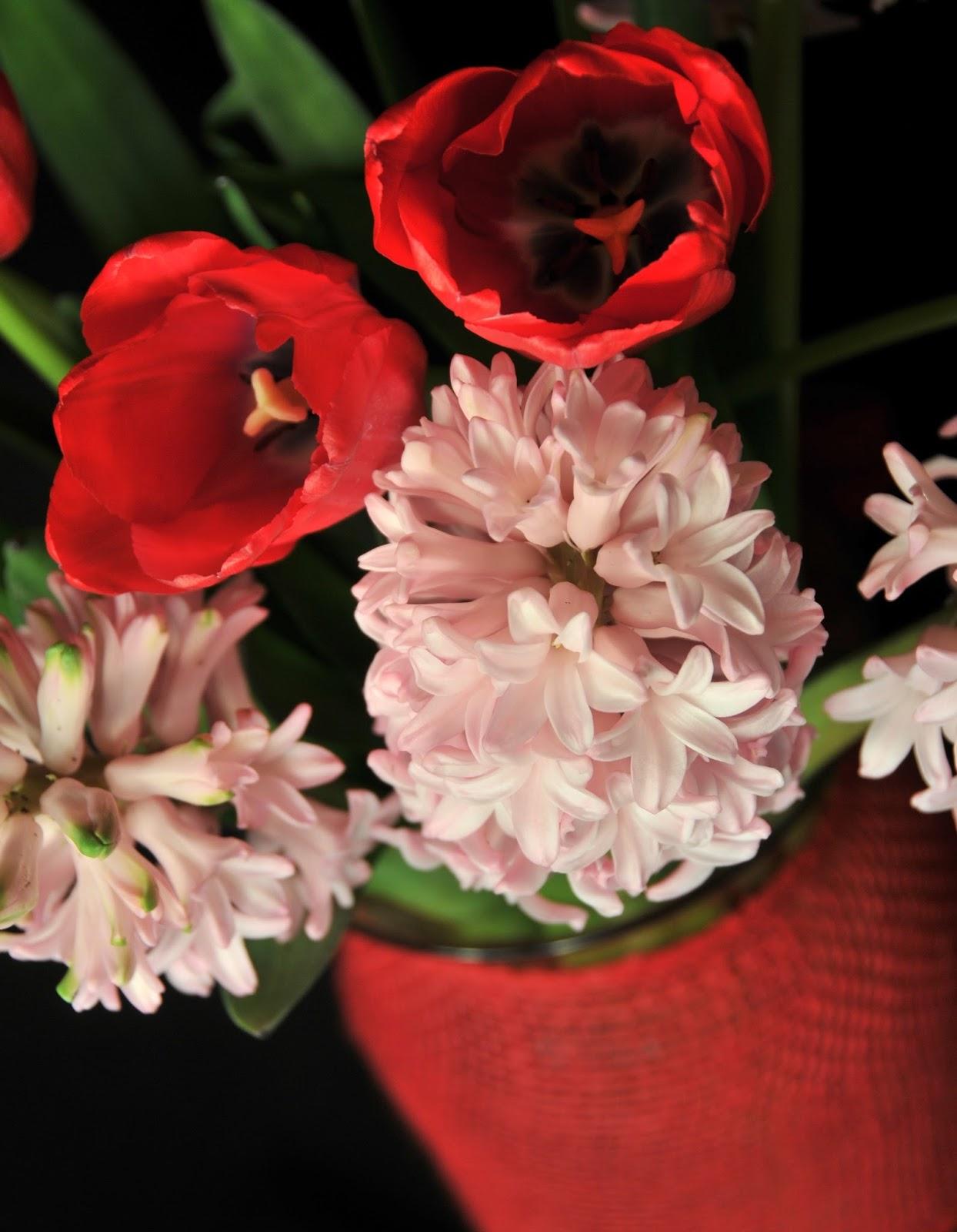 Flower Talk: January 2016