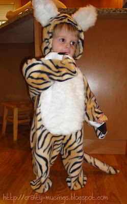tiger costume, front view