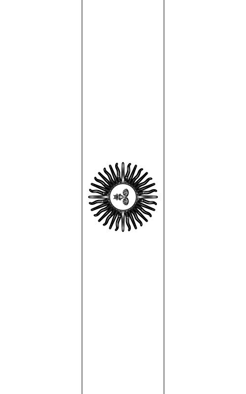 colorear bandera de Argentina para imprimir