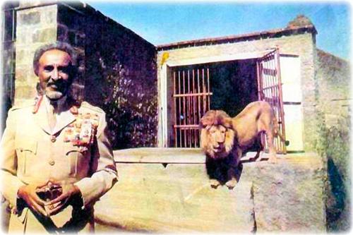 http://4.bp.blogspot.com/-A_MnNNDUnCo/T8YAi02mSXI/AAAAAAAAEq8/t6AZ6rfaJoI/s1600/H_I_M_-Haile-Selassie-I-Lion2.jpg