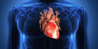 Kebiasaan-kebiasaan yang bisa mengganggu jantung