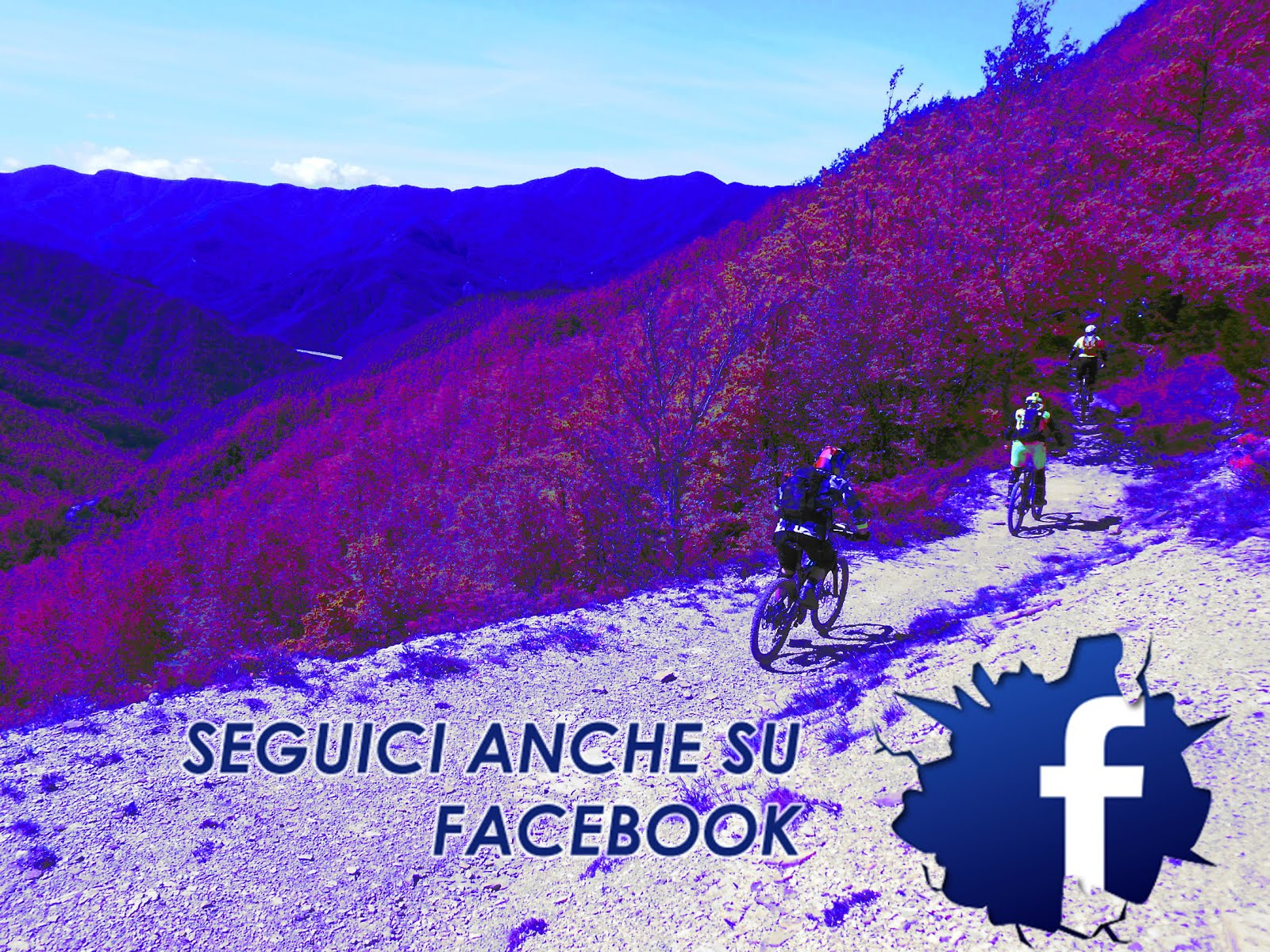 Seguci anche su Facebook!