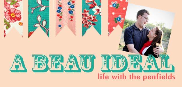 A Beau Ideal