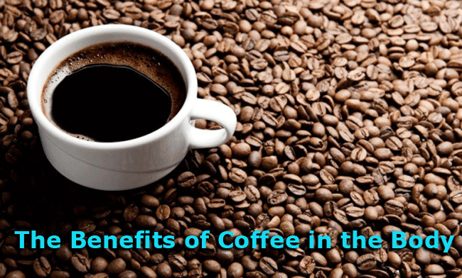 The Benefits of Coffee in the Body
