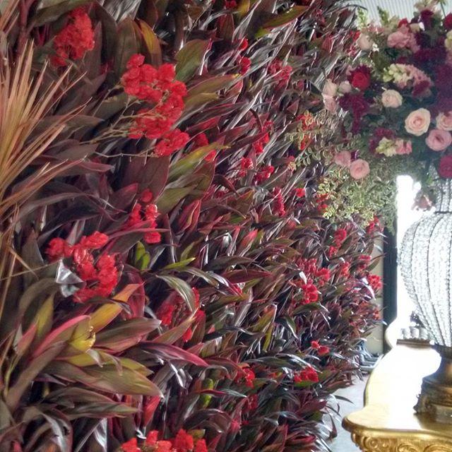 Muro Ingles pode ser todo verde, de samambaias ou outra folhagem como Dracenas vermelhas