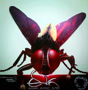 Eega in Hindi Version titled as 'Makki'-Rajamouli