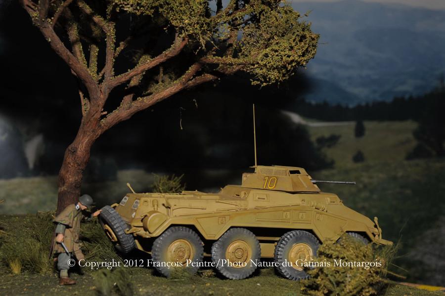 Sd Kfz 234/1