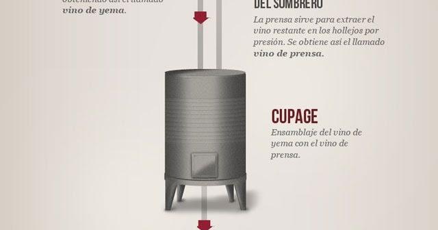 12 Infografías básicas para aprender y disfrutar del vino