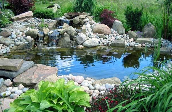 Laghetto la costruzione di un giardino acquatico for Sassi per tartarughe
