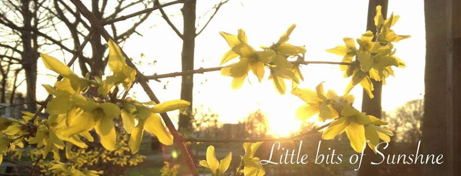 Little Bits of Sunshine