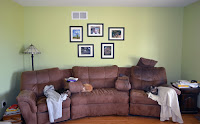 hanging framed photos