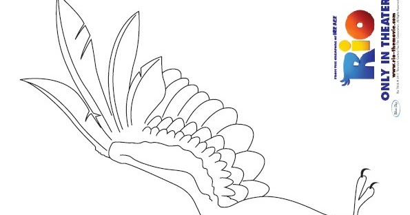 Rio 2 Coloring Pages Pdf : Coloring activity pages blu from quot rio page
