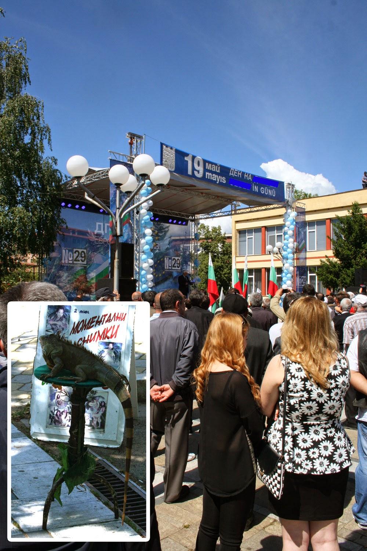 Huge Iguana, and huge crowd