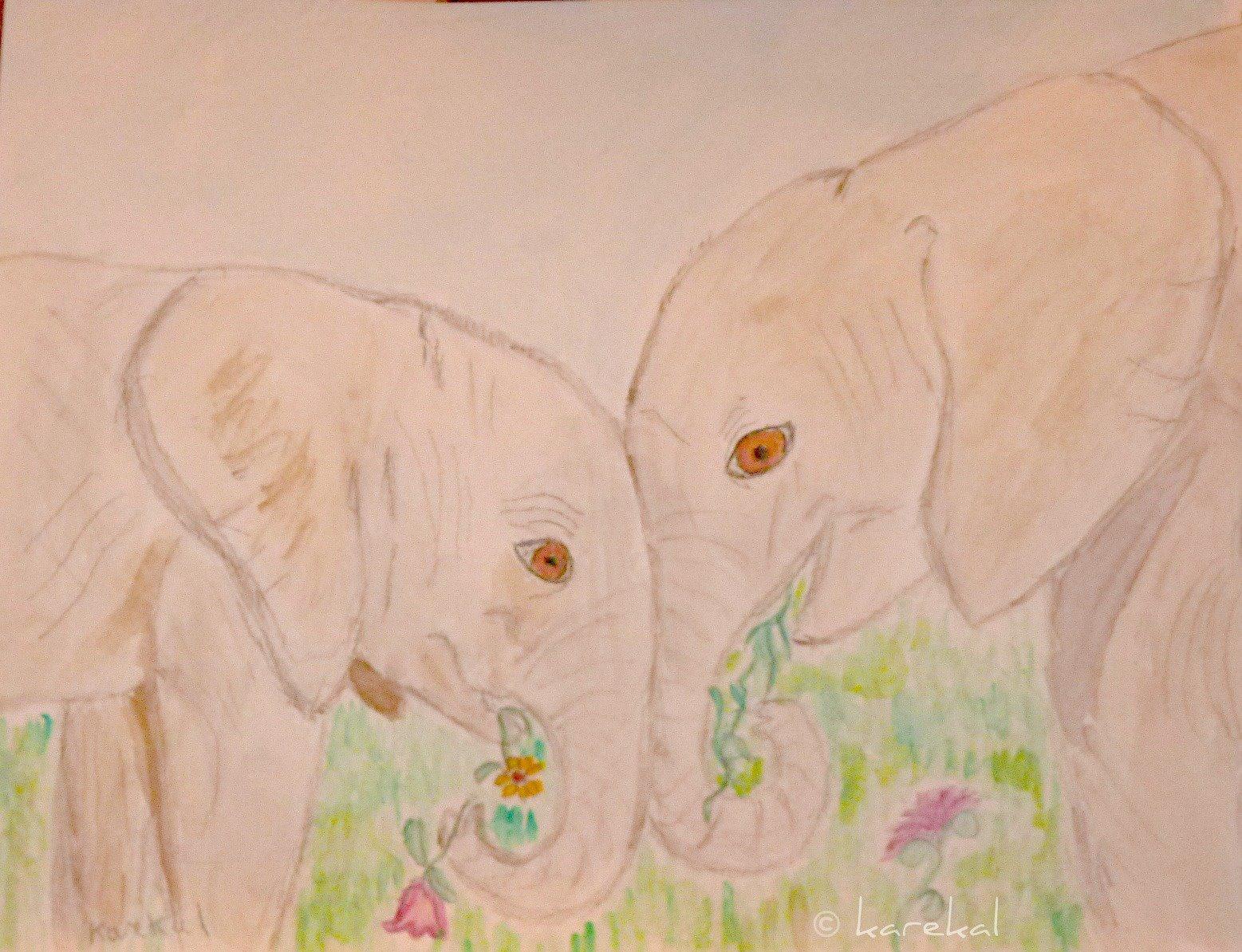 My heart happy world elephants day for Elephant heart trunk