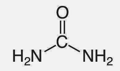 cuales son los valores normales del acido urico remedios caseros para regular el acido urico alimentos malos acido urico