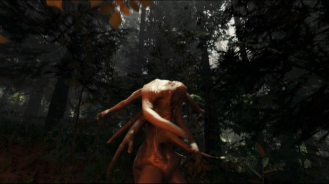 The Forest PC Games Gameplay