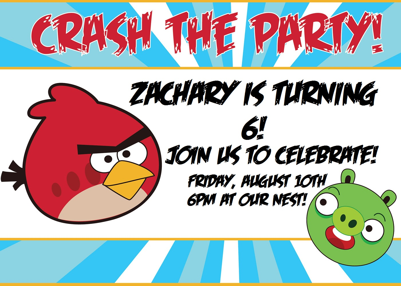 The Adventures of the Ball Family: Zach\'s Angry Bird Birthday Party