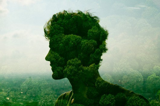 Человек общество и природа