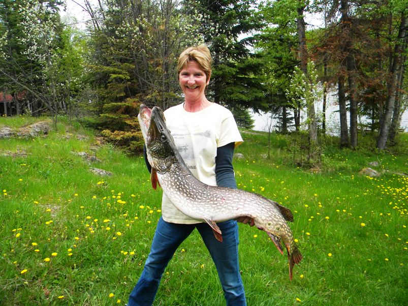 Bow narrows camp blog on red lake ontario did early for Lake wilhelm fishing