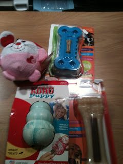 A picture of the toys I have for my puppy.