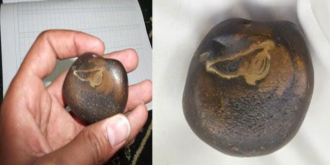 Batu Ababil