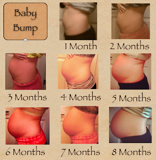 """Search Results for """"Four Month Pregnancy Belly"""" - Calendar ..."""