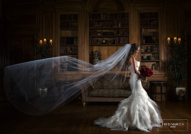 Photo of the Week: Oheka Castle Library