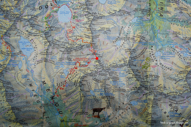 Waga na mapie