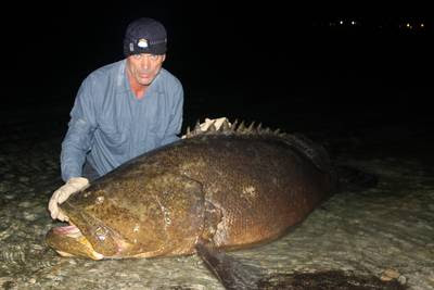 jeremy wade goliath grouper river monsters season 4 animal planet