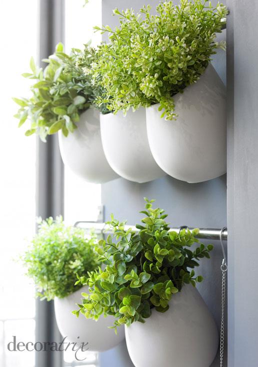 I d e a espacio cocina plantas - Plantas en la cocina ...