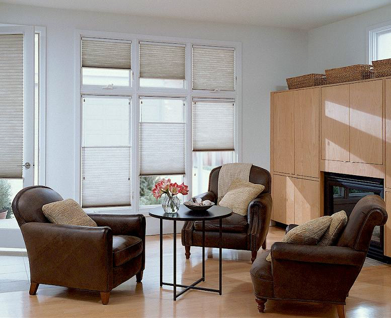 The Blind Alley | Hunter Douglas Duette Honeycomb Shades