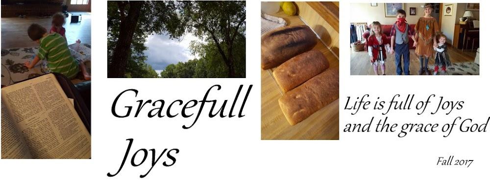 Gracefull Joys