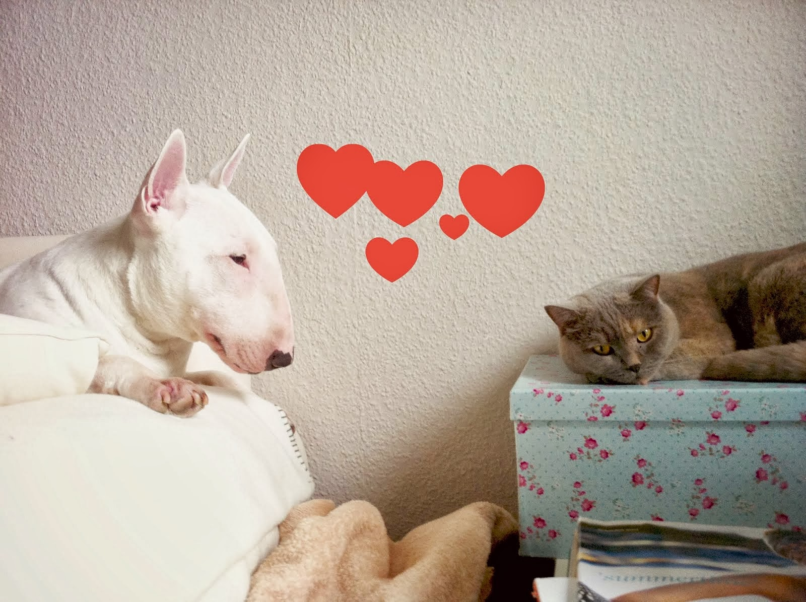 Brösel in Love