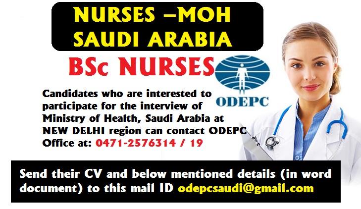 nurses job vacancy  recruitment of bsc nurses  u2013 moh  saudi