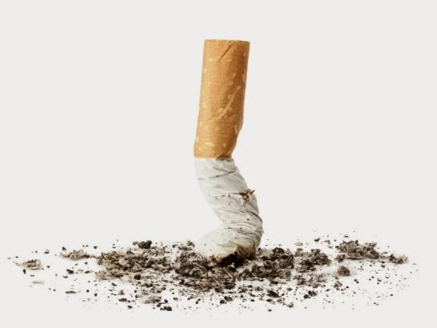 Feri diselubungi asap kerana puntung rokok siapa punya angkara