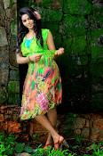 Tamil heroine Shalu glam pics-thumbnail-7