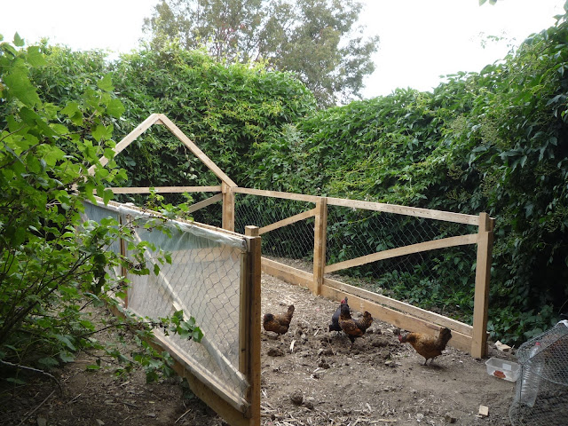 Pallet wood greenhouse design and construction