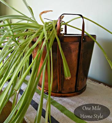 Plant Inside a Copper Basket