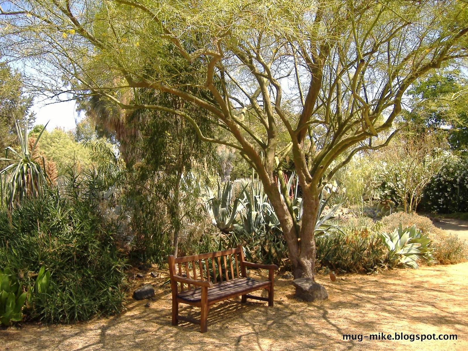 MUG - Mike\'s Urban Garden: Ruth Bancroft Garden Tour