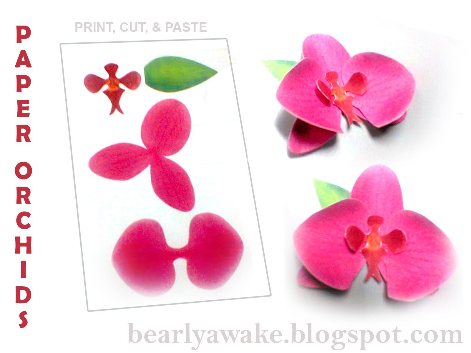 Орхидеи с бумаги своими руками